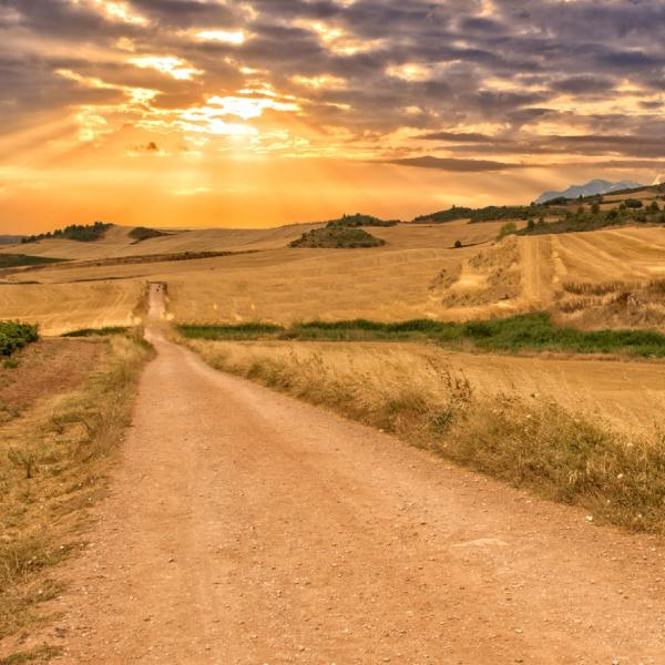 Camino de Santiago Medihiking