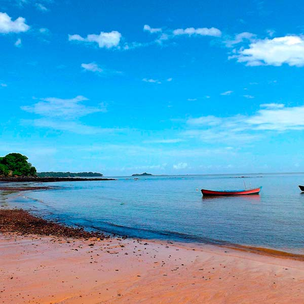 Amazonas - una aventura natural